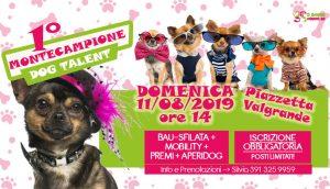 1° Montecampione Dog Talent