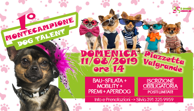 L'11 agosto 2019 vieni al dog talent a Montecampione