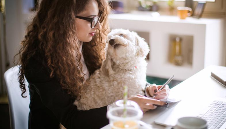 21 giugno: giornata mondiale del cane in ufficio