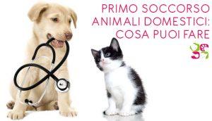 Post-Primo_soccorso