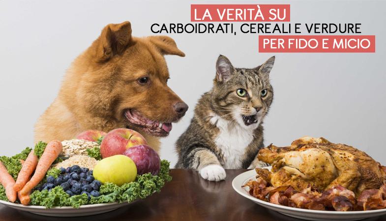 La verità su carboidrati, cereali e verdure per cani e gatti