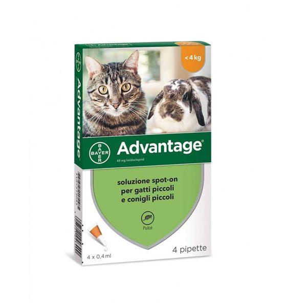 Advantage Spot on protection per gatto 4 fiale 4kg